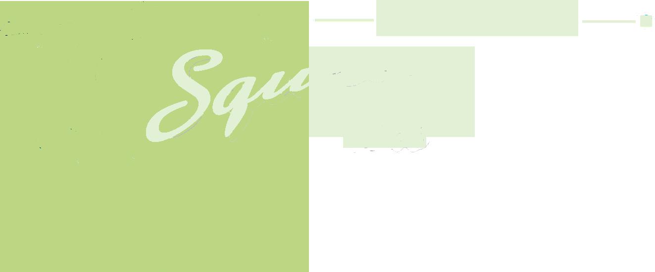 AddressCheck logo